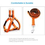 URPOWER-Dog-Harness-Durable-Dog-Leash-Heavy-Duty-Adjustable-Dog-Collar-Anti-Twist-Dog-Leash-Harness-for-Small-Medium-Large-Dogs-Perfect-for-Walking-Running-Training-0-1