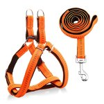 URPOWER-Dog-Harness-Durable-Dog-Leash-Heavy-Duty-Adjustable-Dog-Collar-Anti-Twist-Dog-Leash-Harness-for-Small-Medium-Large-Dogs-Perfect-for-Walking-Running-Training-0