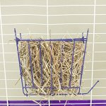 Ware-Manufacturing-Hay-Feeder-with-Salt-Lick-for-Small-Pets-0-0