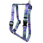 Yellow-Dog-Design-Paisley-Power-Roman-Style-H-Dog-Harness-0