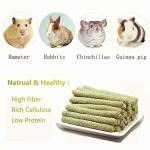 sharllen-20sticks-Natural-Gold-Oat-Grass-Molar-Rod-Pet-Snacks-Chew-Toys-for-Rabbit-Hamsters-Guinea-Pig-Chinchillas-Squirrel-and-Other-Small-Animals-0-1