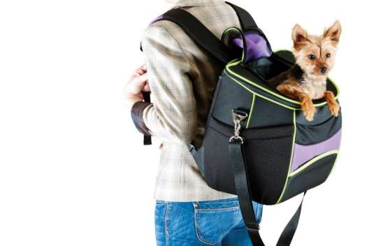 Dog Carrier Backpack 25 Lbs
