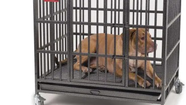 Indestructible Dog Crate