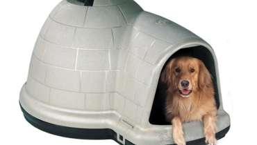 Walmart Large Dog Crate