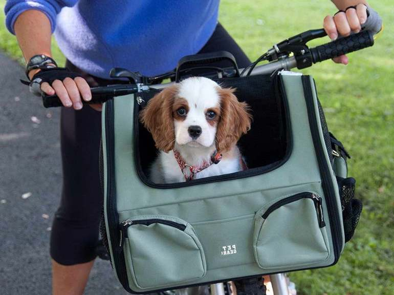Dog Basket For Bike