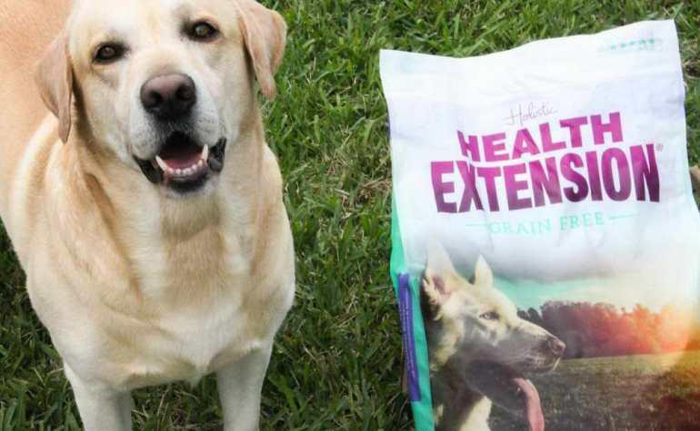 Health Extension Dog Food