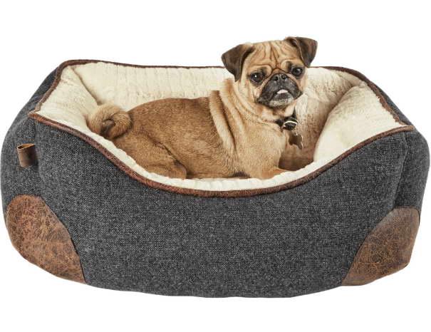 Petco Dog Beds