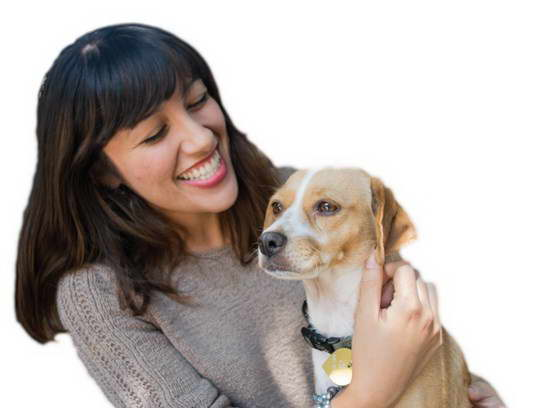 Low Cost Vaccinations For Dogs
