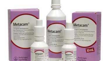Metacam Dogs