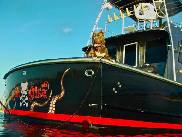Salty Dog Boats