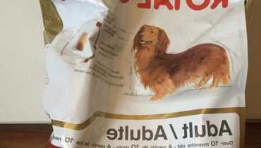 Royal Canin Dachshund Review