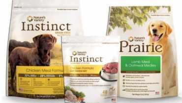 20 Best Dog Foods