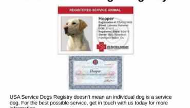 Us Dog Registry Phone Number