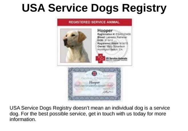 Us Dog Registry Phone Number