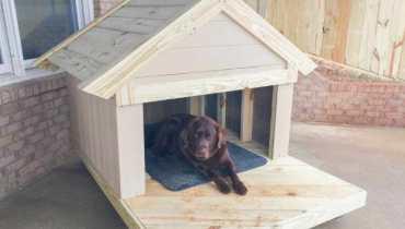 labrador dog house size