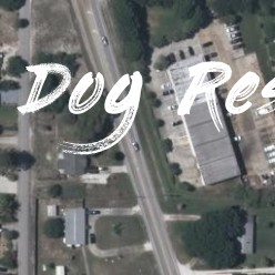 14 14RD ST SW owned by RESCUE DOGS LLC - Dog Rescue Florida