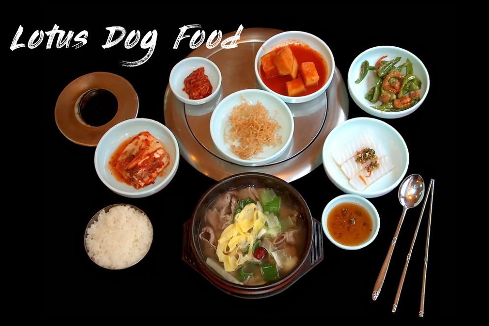 South Korea - Restaurant - Dinner - 7d - Lotus Dog Food