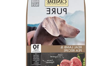 All you need to know about grain free dog food 50 pounds
