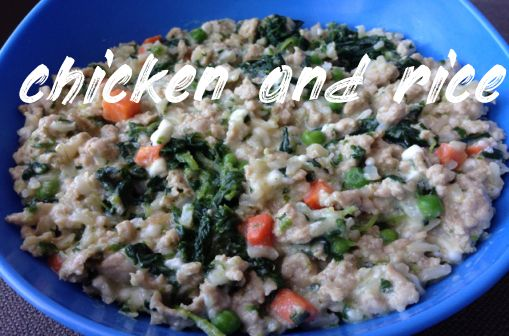Chicken And Rice Dog Meat