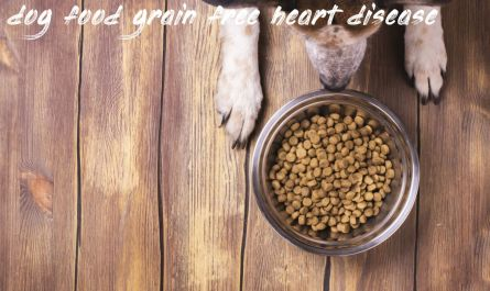 All you need to know about dog food grain free heart disease