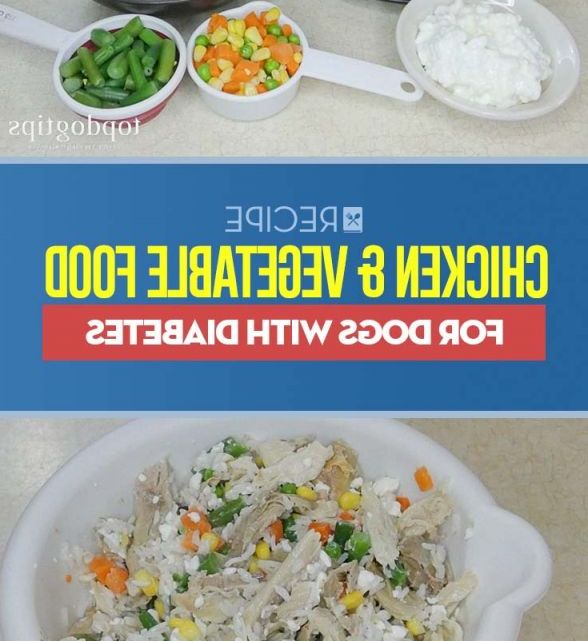 Boiled Chicken And Rice For Dogs Portions