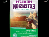 Dog Food Grain Free Why