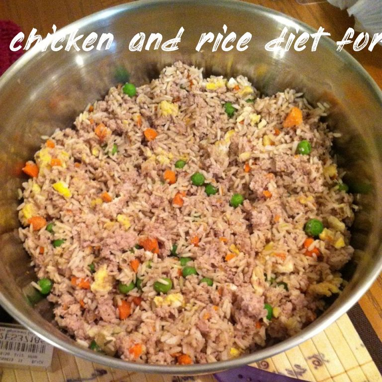 Things you should know chicken and rice diet for dogs ratio
