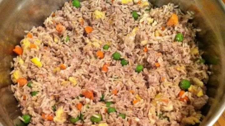 Chicken And Rice Diet For Dogs Ratio