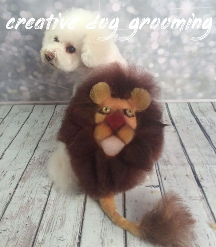 Creative Dog Grooming Overview