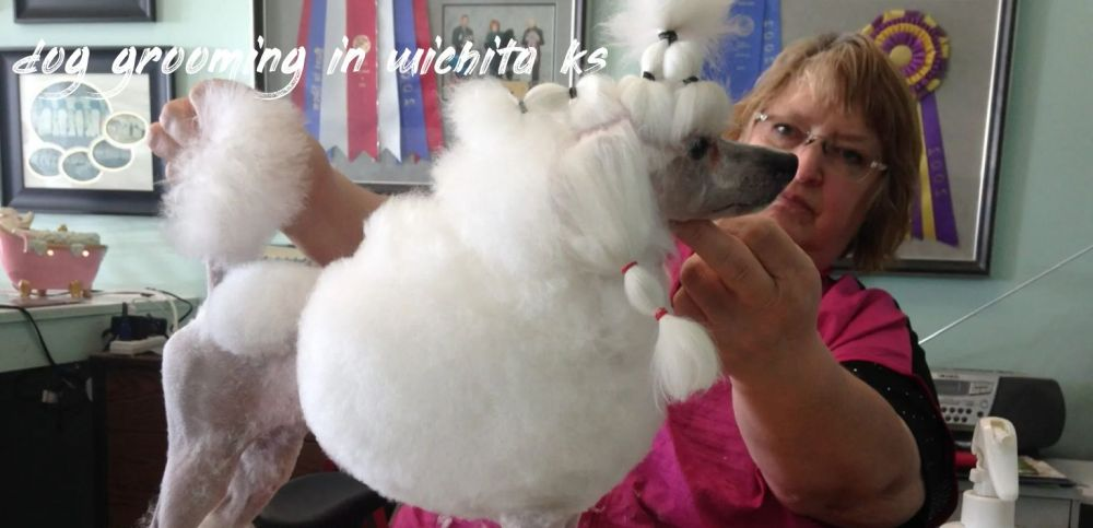 dog grooming in wichita ks Recommended
