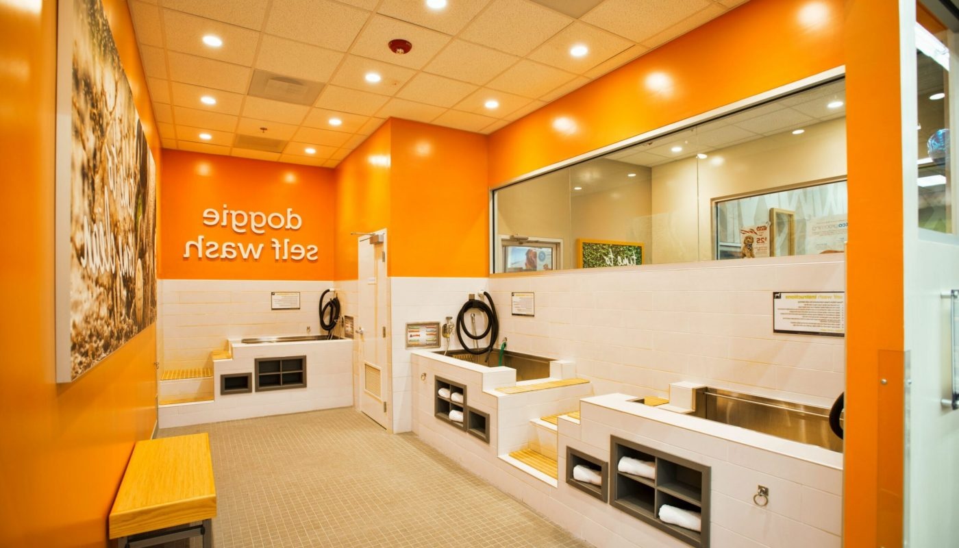 Dog Grooming Places Near Me Recommended