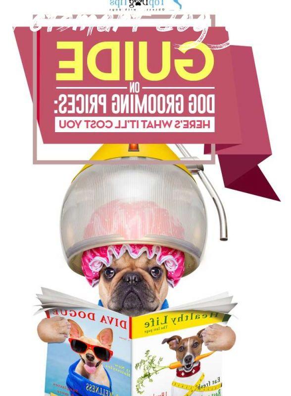 Petsmart Dog Grooming Price Price