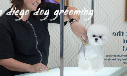 san diego dog grooming Cost