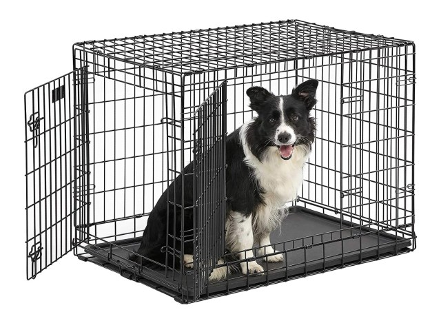 The Best Cages To Buy For Your Dog