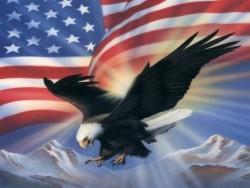 ameagleflag1024wp