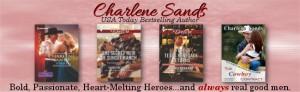 Charlene Newsletter Banner Red (1)
