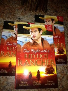 One Night with the Red Hot Rancher