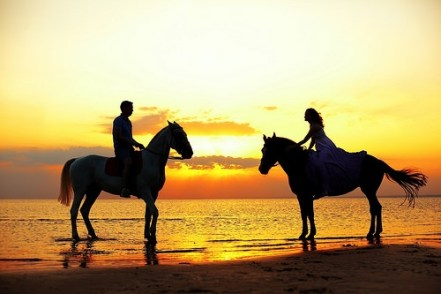 Horses Beach Sunset