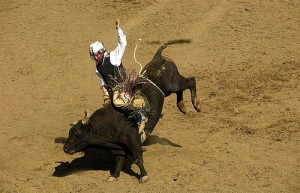 Barbara Ankrum Bull rider 1