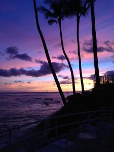 Bachelor Island island pic