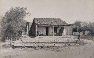 Ortega Old Pix
