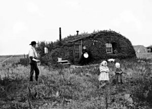 Homesteading on the Prairie
