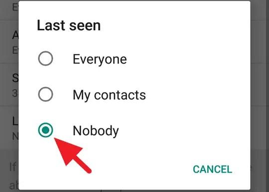 WhatsApp Terlihat Offline