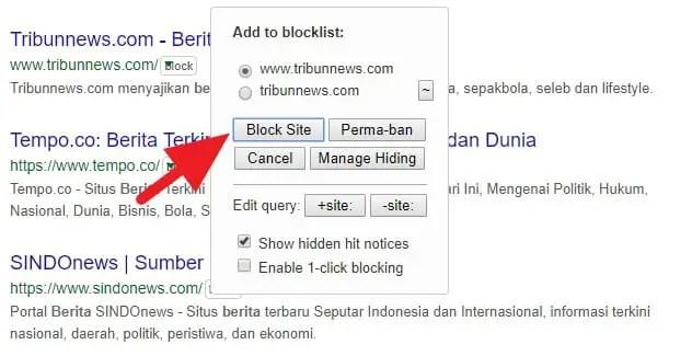 3 Cara Blokir Situs Tertentu dari Hasil Pencarian Google 13
