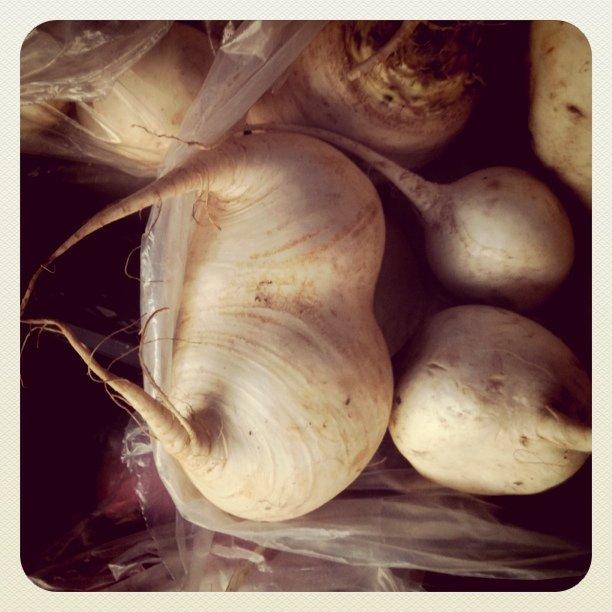 Turnip?