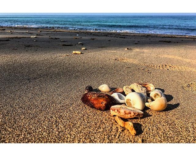 Early morning treasure hunts on the beach – before the sun hurts. Love them. I roam the coast searching for shells in the shapes and sizes of the kids. Homesick much? I guess so. #Thailand #KohLanta #beach #seashells