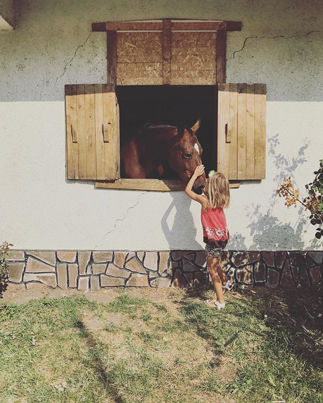Любов #latergram #summerstories #Bulgaria #Burgas + . . . . . #travelgram #travelphotography #picoftheday #traveldiary #instatravel #travelpics #seaside #summerstories #nomadstories #instaarchive #horses #kidsmodel #barn #animallovers #horsesofinstagram #kidsofinstagram #cutenessoverload