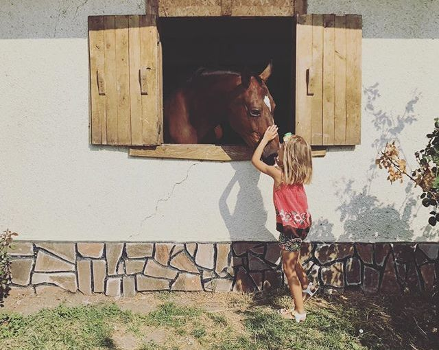 Любов #latergram #summerstories #Bulgaria #Burgas+…..#travelgram #travelphotography #picoftheday #traveldiary #instatravel #travelpics #seaside #summerstories #nomadstories #instaarchive #horses #kidsmodel #barn #animallovers #horsesofinstagram #kidsofinstagram #cutenessoverload