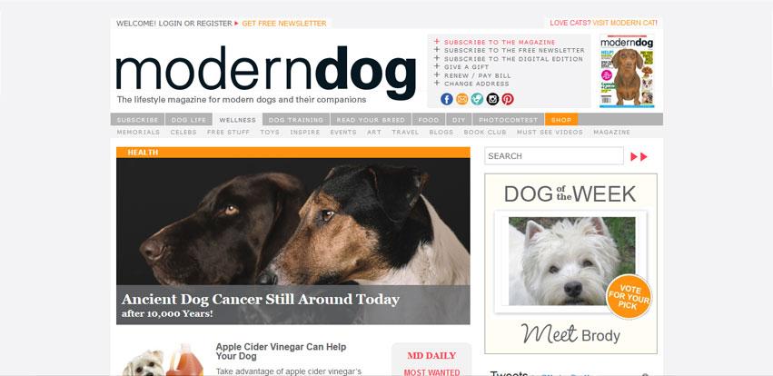 moderndogmagazine