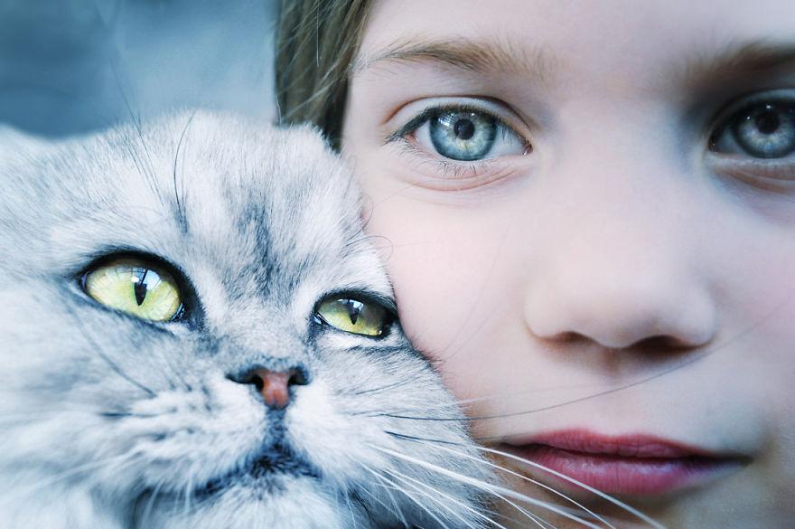 Zašto i kako mačke predu?